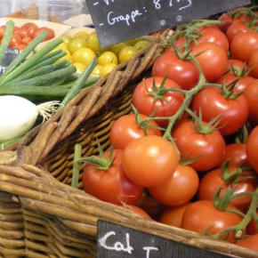 tomates tentations