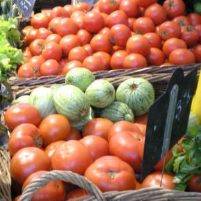 tomates classiques